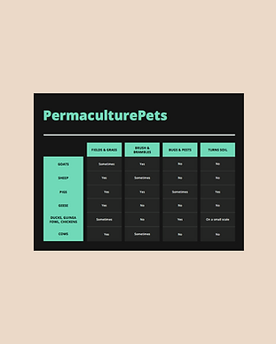 PermaculturePets.png