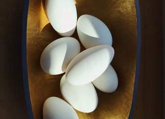 Goose Egg Recipes