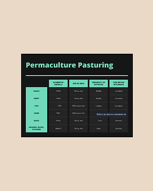 Permaculture Pasturing.png