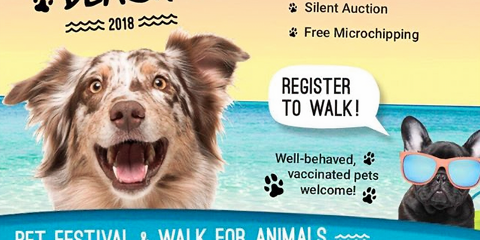 Paws at the Beach Pet Festival 2018