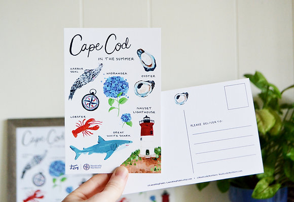 Cape Cod in the Summer Postcard