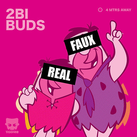 2bibuds-Prev.jpg