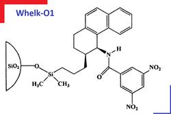 Whelk-01