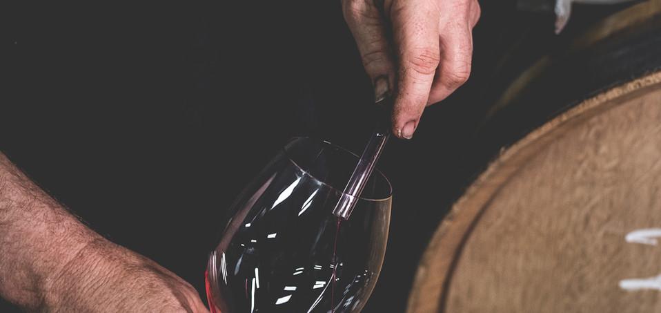 Micro Winery