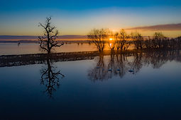 Levels sunrise  (2 of 4).jpg
