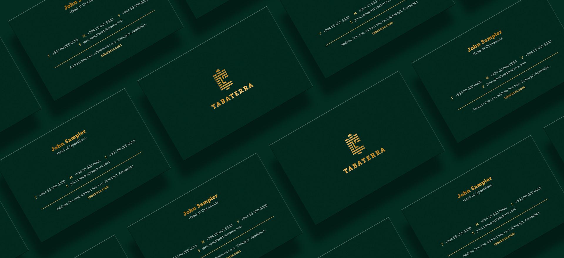 tll_tabaterra_Bus card design 2.jpg