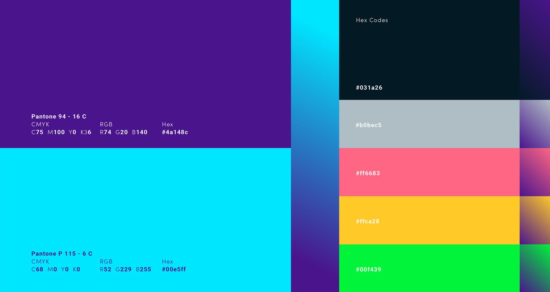 TLL_pm_brand Colours.jpg