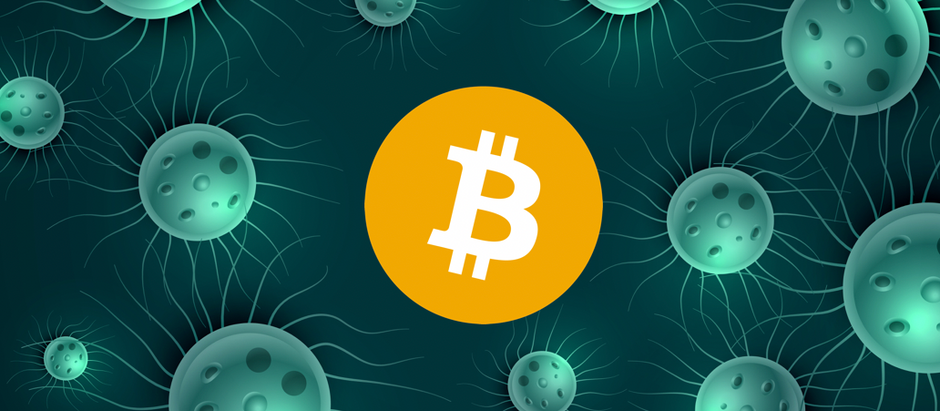 """""""A pandemic; what Bitcoin needed."""""""