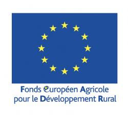 logo_fonds_europeen.jpg
