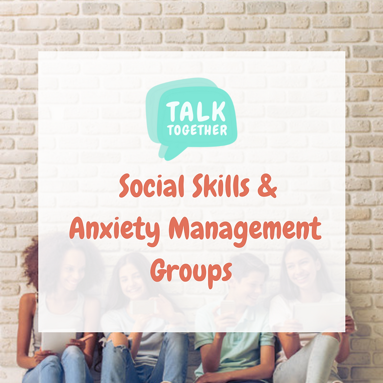 Term 3 Online 11-17yr: 6-week Social Skills & Anxiety Management Group