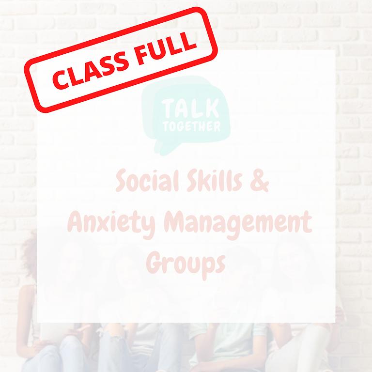 Term 3 Rolleston 11-17yr: 6-week Social Skills & Anxiety Management Group