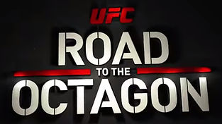 ufc road to octagon.jpeg