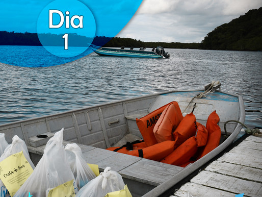 Diário de Bordo Projeto Ribeirinhos 2021 - Gabrielle Peixoto