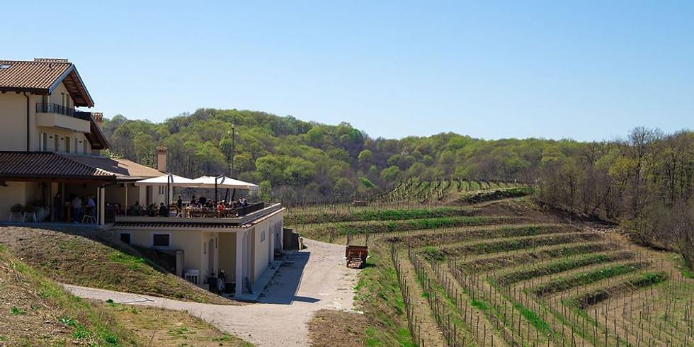 Klanjscek Wine&Stay e Sulpizio Tartufi