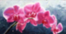 Pink Passion 28x48, NA.jpg