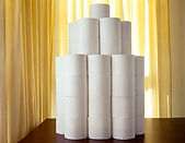 Toilet paper still life by Gregory Maass.Toiletpaper_stilllife.jpg