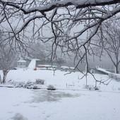 Winter At Hammock Island.JPG