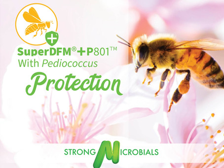 A NEW Bacteria for Pesticide Protection!