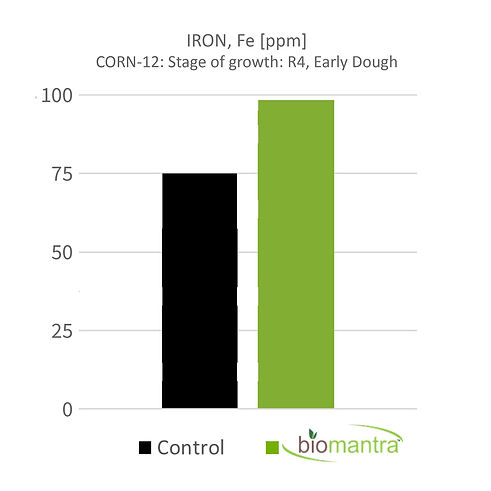 BioMantra Graphs_4.5_Iron-Corn_12-min.jpg