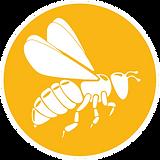 HoneyBee Icon-5in-min.png