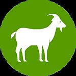 WO_goat_200px-min.png