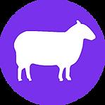 WO_sheep_200Px-min.png