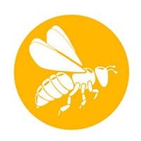 SuperDFM-HoneyBee-200 px-min.jpg