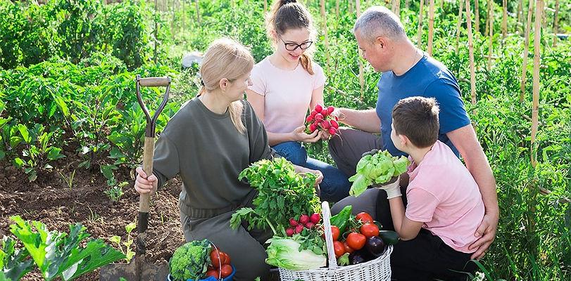 Organic_Farms-1Kpx_min.jpg