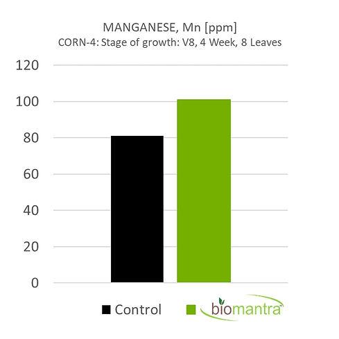 BioMantra Graphs_4.5_Mn-Corn_4-min.jpg