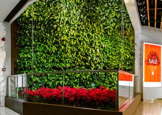 Mur végétal intérieur - centre commercial