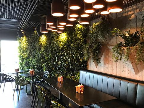 Restaurant - (MO)