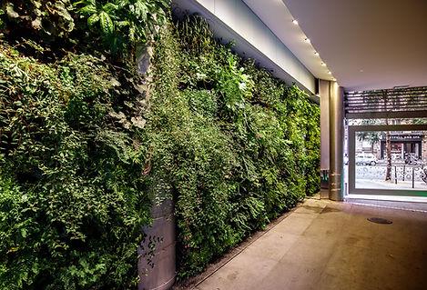 mur végétal Paris Wagram