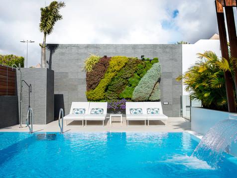 Jardin vertical espagne - Acacia Silvi