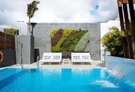hotel design piscine mur végétal