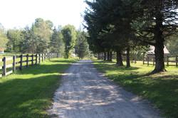 road & pastures