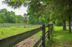 fenced pasture