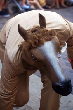 Circo Cavallo