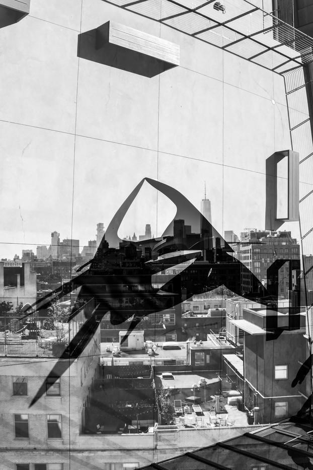 new-york city [13]