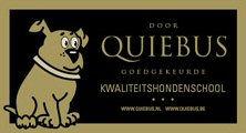 Quiebus.jpg