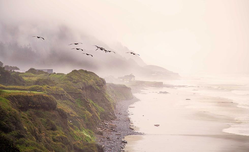 South Oregon Coast