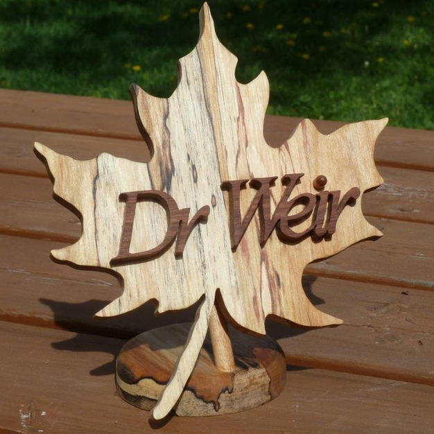 200820-Gord Earle Dr. Weir.jpg