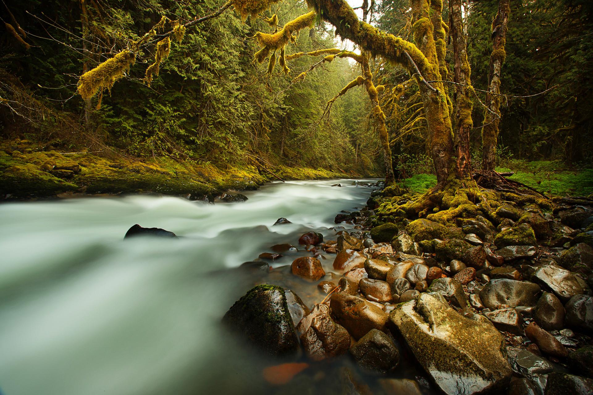 Salmon River Oregon