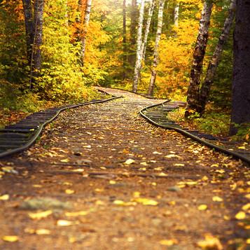Fall2012.jpg