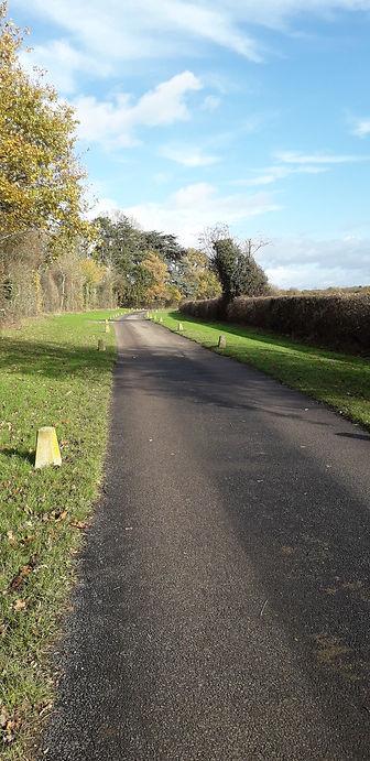 Ashtead WI - Autumn Walk - Lillian.jpg