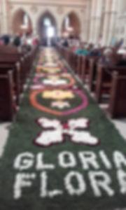 Arundel-Carpet of Flowers 19 June 19.jpg