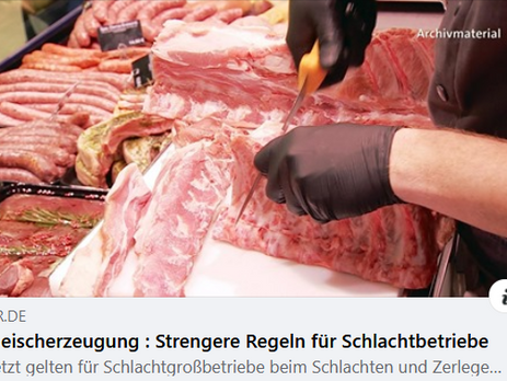 Heute TV Bericht zu den neuen Regeln gegen Ausbeutung von Schlachthofarbeitern