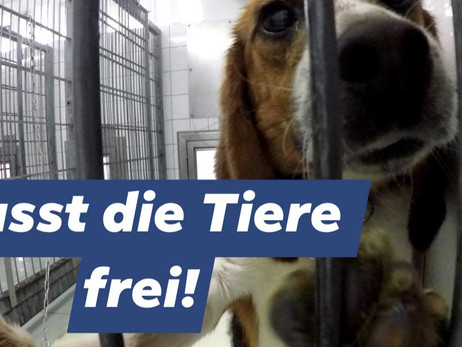 Eilmeldung - Breaking News (DE/EN) Mienenbüttel macht dicht -