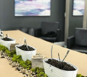 Today's private succulent planting class