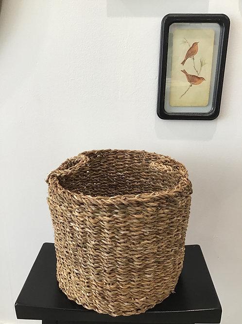 Medium Rattan Basket (Plant Sold Separately)