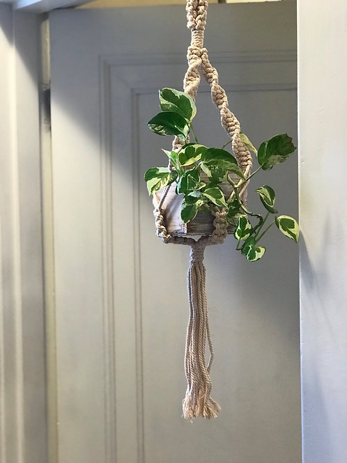 """Macrame Plant Hanger 24""""L (pot and plant sold separately)"""